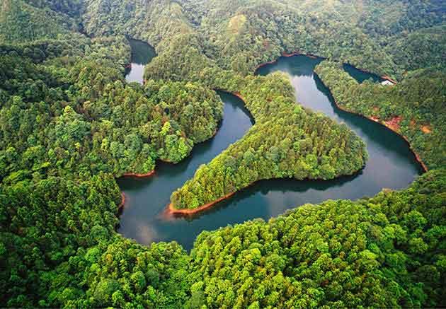林业行业解决方案